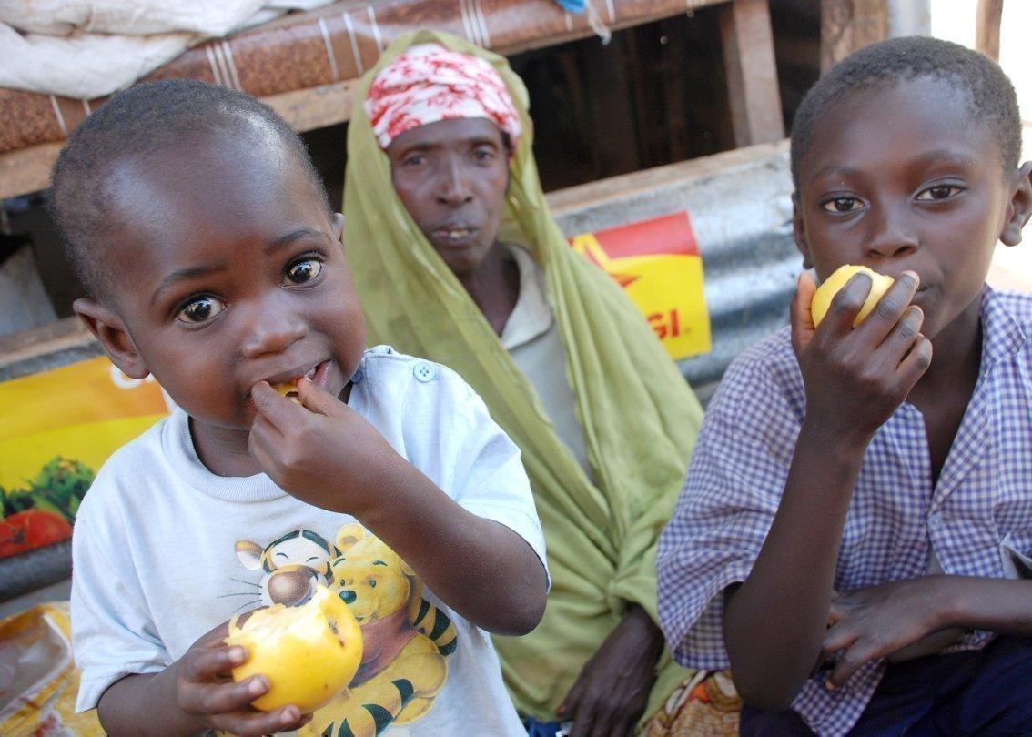 Des enfants africains mangent des pommes.